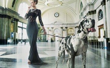 девушка, платье, собака, зал, макияж, прическа, фигура, немецкий дог, поводок