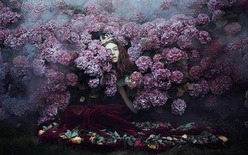 flowers, girl, dress, hair, face, crown, princess, hydrangea, bella kotak