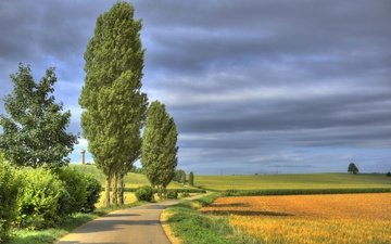 the sky, road, clouds, trees, field, france, lorraine, trieux
