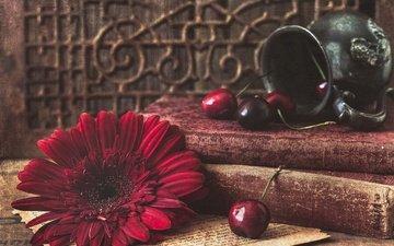 цветок, лепестки, книги, черешня, ягоды, вишня, натюрморт, гербера