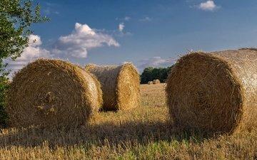 небо, облака, поле, сено, лето, солома