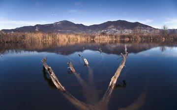 небо, озеро, горы, природа, дерево, пейзаж, горизонт, горный хребет