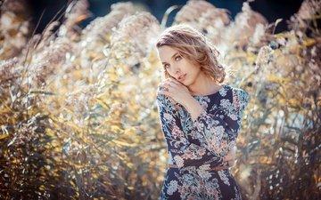 природа, растения, девушка, платье, лето, взгляд, волосы, лицо, таня