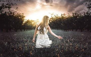 природа, девушка, блондинка, модель, волосы, полевые цветы, белое платье