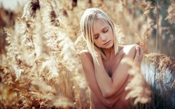 nature, plants, girl, blonde, model, spikelets, closed eyes, tatjana