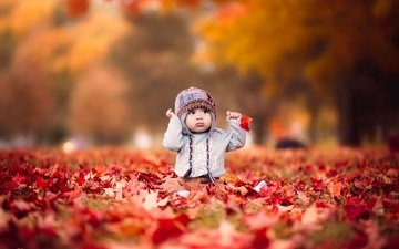 nature, leaves, autumn, children, the game, child, hat, baby