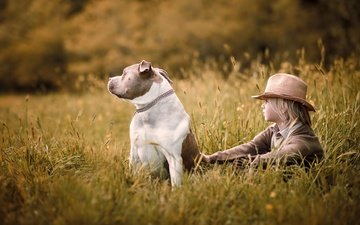 nature, mood, field, dog, sitting, boy, childhood, hat, friends