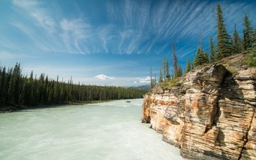 river, forest, rock, canada, albert, alberta, the bow river, bow river