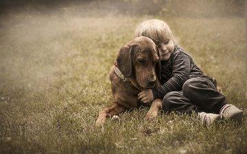 трава, собака, дети, ребенок, мальчик, друзья