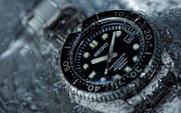 вода, стиль, макро, часы, время, стрелки, сейко