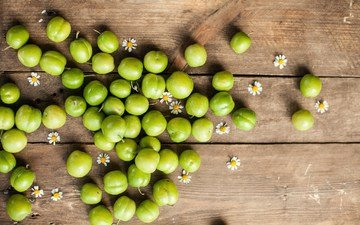 фрукты, ромашки, зеленая, алыча, слива