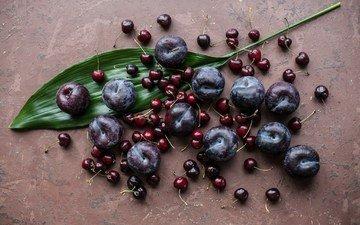 фрукты, лист, вишня, слива