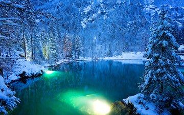 озеро, снег, природа, лес, зима, швейцария, ели
