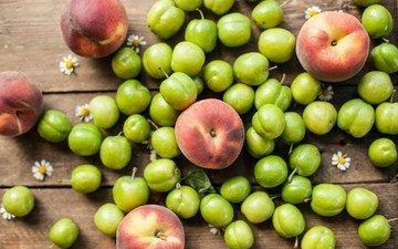фрукты, ромашки, зеленая, персики, слива