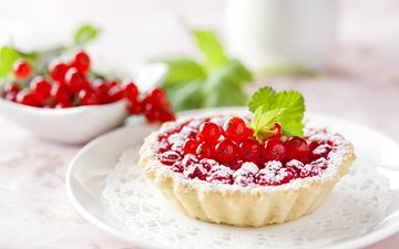 berries, 1, cakes, red currant, powdered sugar, tartlets