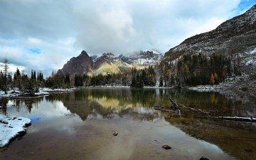 деревья, озеро, горы, снег, отражение, канада, национальный парк йохо, озеро шаффер
