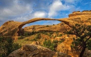 небо, облака, скалы, камни, сша, юта, арка, национальный парк арки, арчес