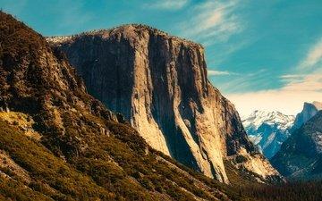 деревья, горы, скалы, лес, сша, ущелье, калифорния, йосемити, йосемитский национальный парк