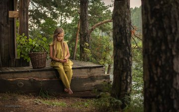 trees, forest, look, children, girl, basket, child