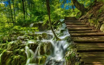 grass, trees, the sun, greens, stream, the bushes, waterfall, moss, croatia, bridges, plitvice lakes national park