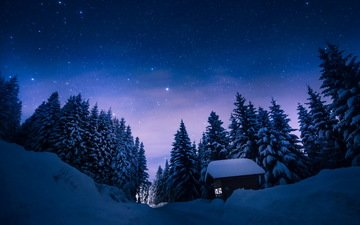 the sky, trees, snow, forest, winter, stars, pine, house, snowfall