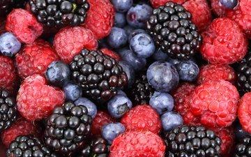 макро, малина, ягоды, черника, ежевика