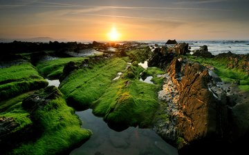 the sky, rocks, the sun, stones, sea, coast, algae