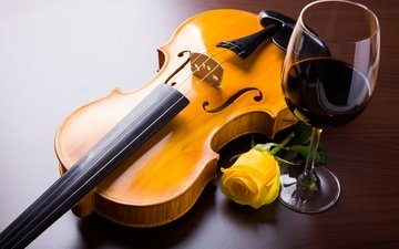 flower, violin, rose, strings, glass, wine, musical instrument