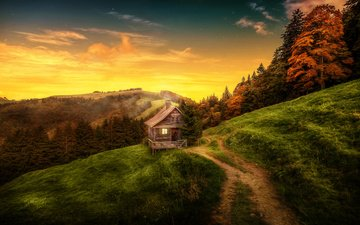 the sky, clouds, trees, forest, landscape, autumn, switzerland, path, house