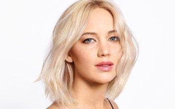 girl, blonde, portrait, look, face, actress, white background, jennifer lawrence