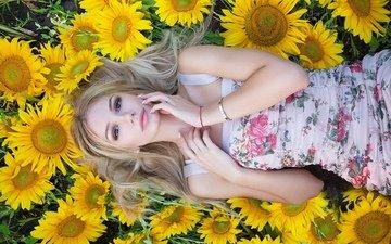 цветы, девушка, блондинка, лепестки, взгляд, модель, волосы, лицо, подсолнухи, aleksey lozgachev