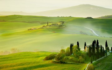 trees, hills, nature, field, summer, italy, tuscany, san quiricoorcia