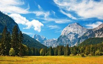 небо, трава, облака, деревья, горы, поле, баварские альпы