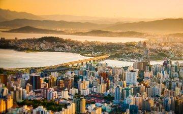 the city, brazil, bing, florianopolis