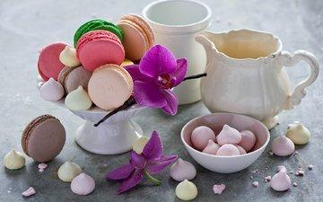 цветы, кувшин, сладкое, орхидея, печенье, десерт, зефир, макаруны, безе