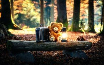 лес, мишка, игрушка, фонарь, чемодан