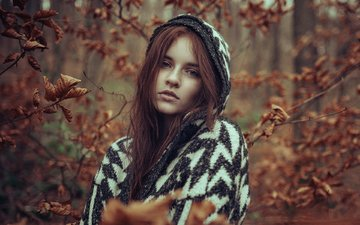 leaves, girl, portrait, branches, autumn, freckles, brown hair, redhead, schabernack