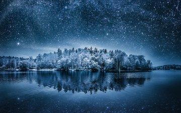ночь, озеро, природа, лес, зима, пейзаж, звезды