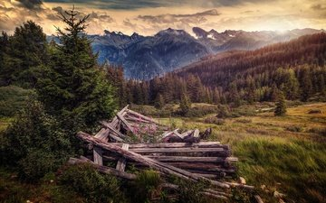 trees, mountains, hills, nature, austria, logs, space, tyrol, serfaus
