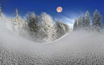 небо, деревья, снег, природа, лес, зима, луна, сугробы