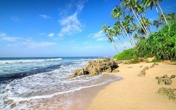 небо, облака, пейзаж, море, пляж, пальмы, тропики