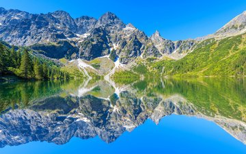 trees, water, lake, mountains, rocks, the sun, stones, reflection, poland, tatras, tatra mountains