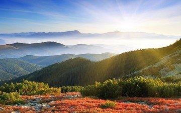 небо, облака, деревья, горы, холмы, природа, пейзаж, долина, альпы