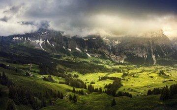 трава, горы, пейзаж, швейцария, луг