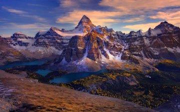 деревья, горы, лес, озёра, канада