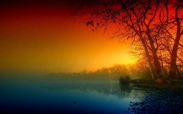 trees, lake, shore, fog, branches, autumn, haze
