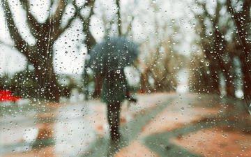 деревья, девушка, капли, модель, дождь, зонт, rainy days, luis valadares