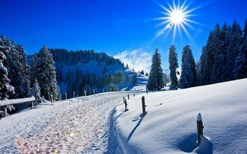 небо, дорога, деревья, солнце, снег, природа, зима, сосны, следы, сугробы, солнечный день