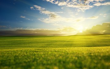 небо, облака, восход, солнце, пейзаж, утро, поле, горизонт, рассвет