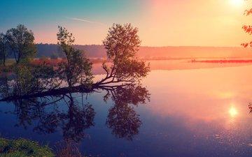 the sky, trees, lake, sunrise, reflection, landscape, morning